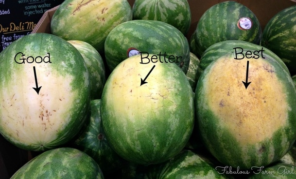 How To Pick A Perfect Watermelon by FalulousFarmGirl. Nothing beats a delicious watermelon and this method is fool-proof.