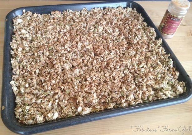 Homemade Honey Granola by FabulousFarmGirl. So good and not just for breakfast!
