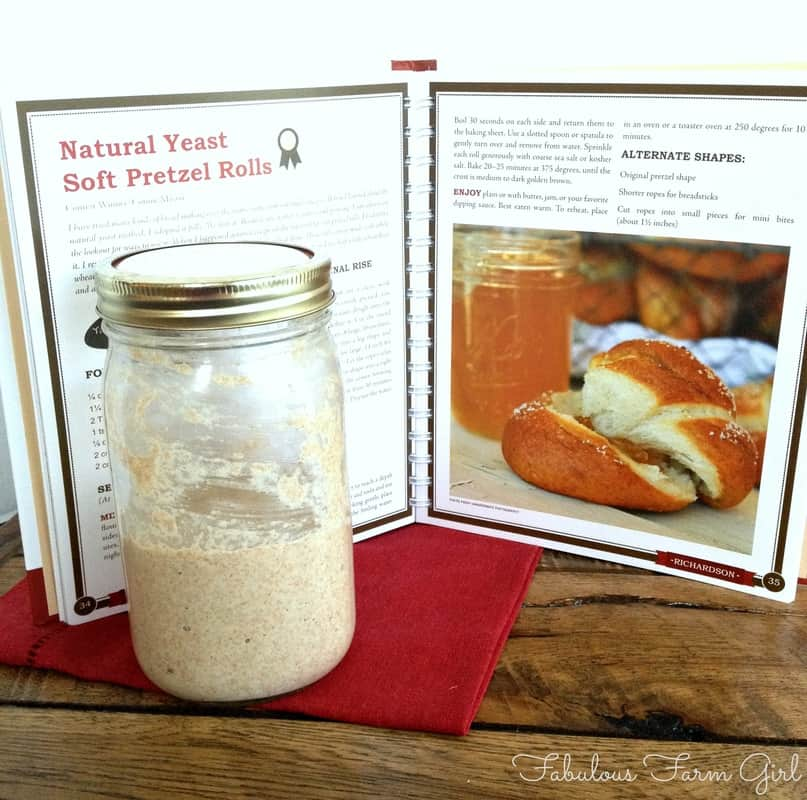 Beyond Basics With Natural Yeast book review by Fabulous Farm Girl.